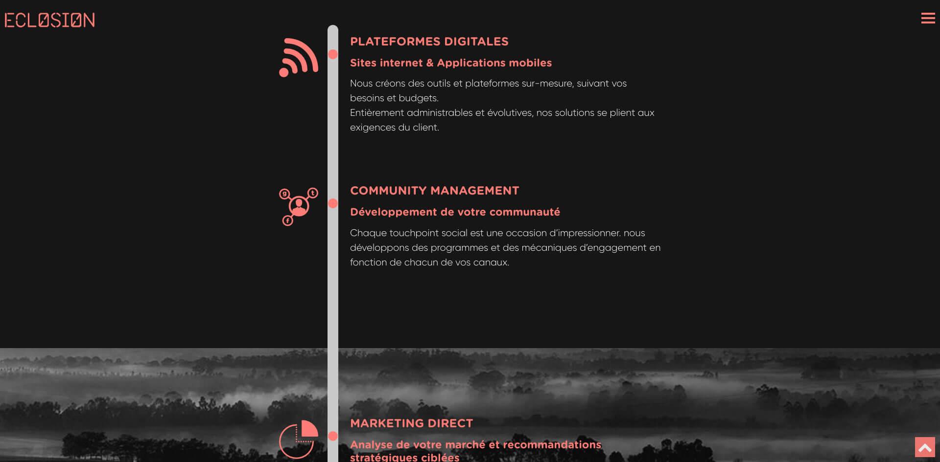 Site web de l'agence éclosion - Page Expertise